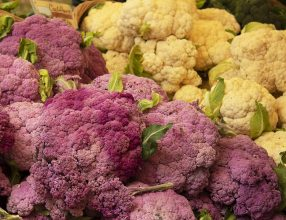 Heads of white and purple cauliflower