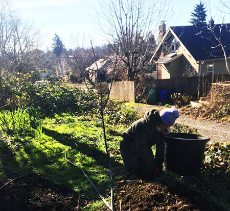 pdxfarm team member preparing garden soil