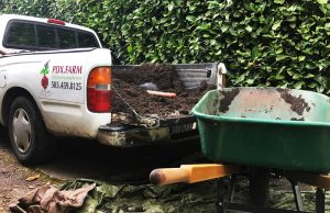 pdxfarn soil in the back of pick up truck