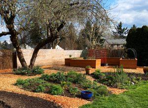 pdxfarm-yard-transformation-after